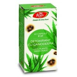 Ceaiul V—Ceai Pentru Prostata Si Vezica, punga a 50 gr FARES