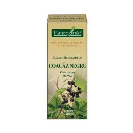 Extract Muguri Coacaz Negru 50ml PLANTEXTRAKT