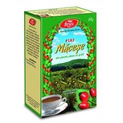 Ceai Macese – Fructe, punga a 50 gr FARES
